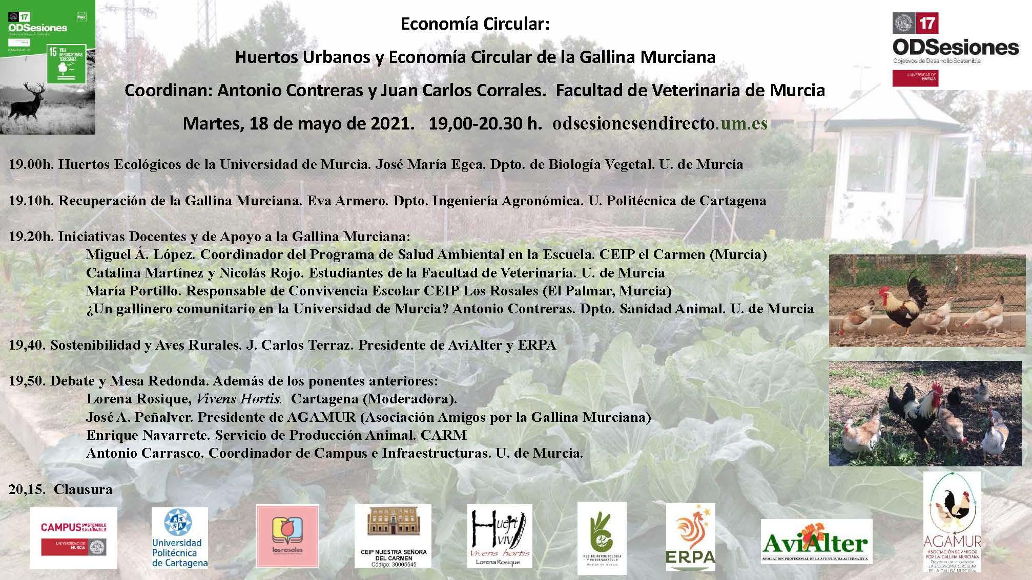 Huertos Urbanos y Economia Circular de la Gallina Murciana